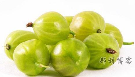 英国的水果-Gooseberries(鹅莓)