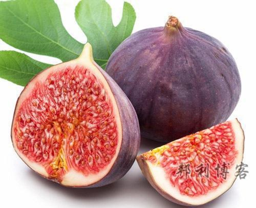 英国的水果-Figs(无花果)