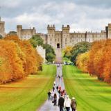 【Windsor Castle】温莎城堡,奢华的皇室行宫