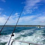 【Bournemouth 】伯恩茅斯出海钓鱼攻略