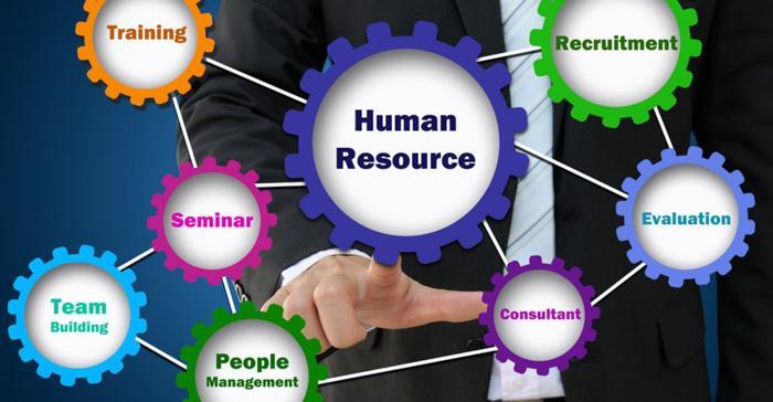 英国人力资源管理专业