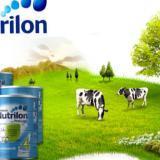 荷兰牛栏奶粉白金版含金量在哪里?