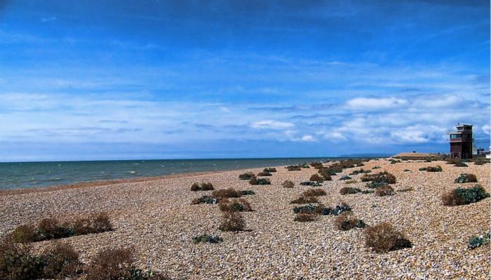 邓杰内斯海滩(Dungeness Beach)