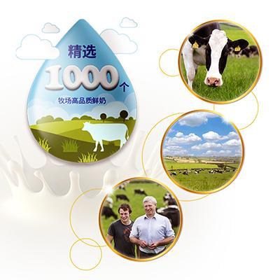 爱尔兰奶源