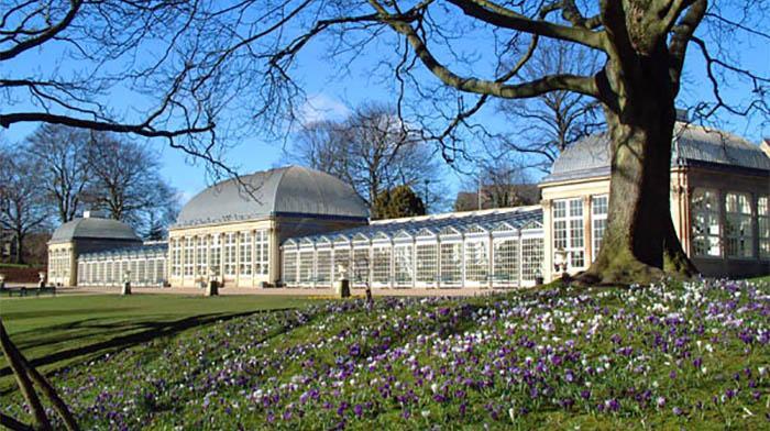 谢菲尔德周边美景推荐之植物园(The Botanical Gardens)