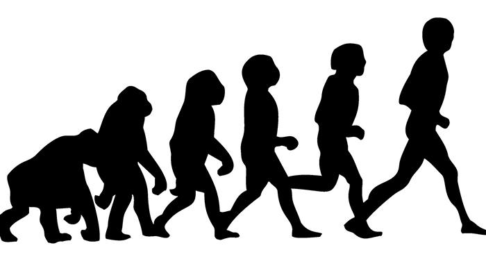 (Theory of Evolution)