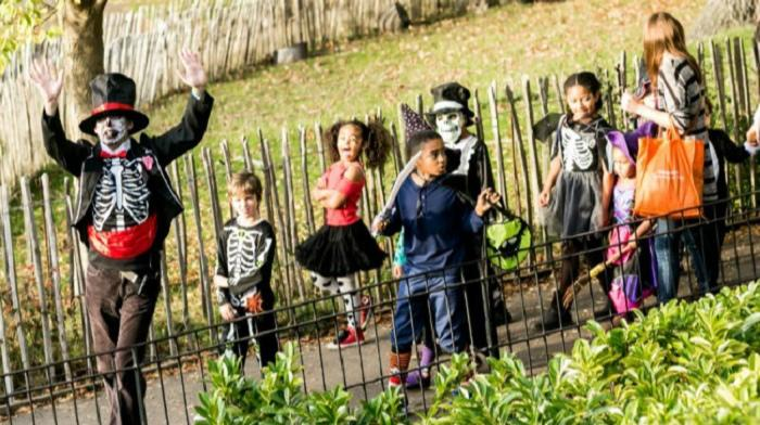 The Horniman Halloween Fair
