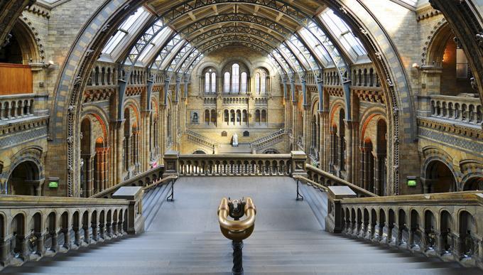 伦敦自然历史博物馆