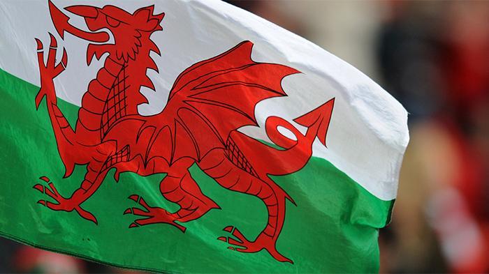 威尔士旗子