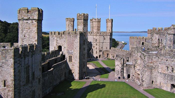 沃德城堡(Castle Ward)
