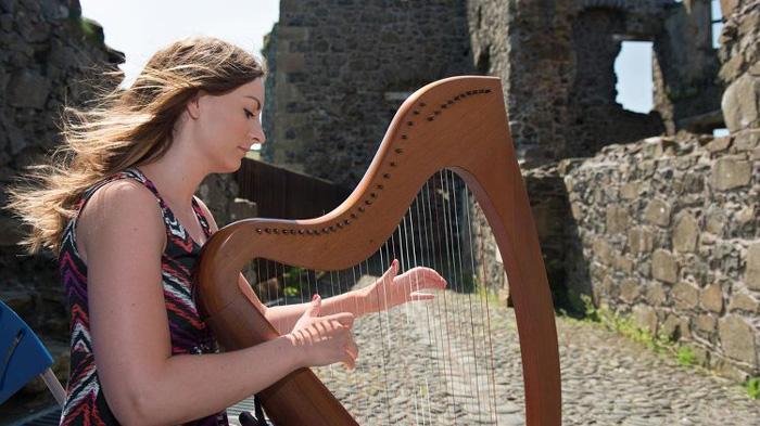 爱尔兰竖琴